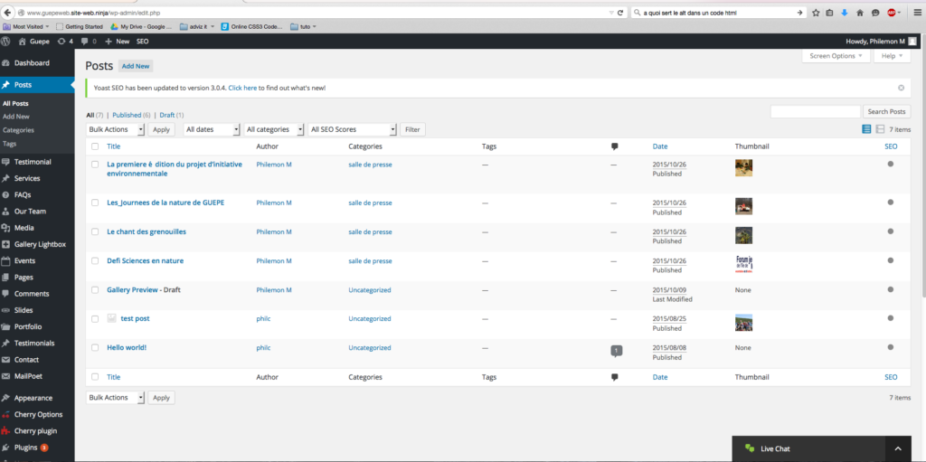 capture d'écran de la page articles de WordPress