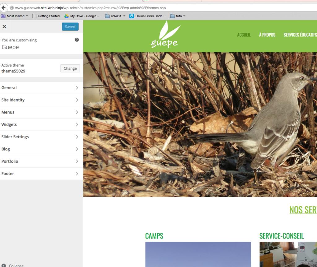 capture d'écran de la page customize de WordPress