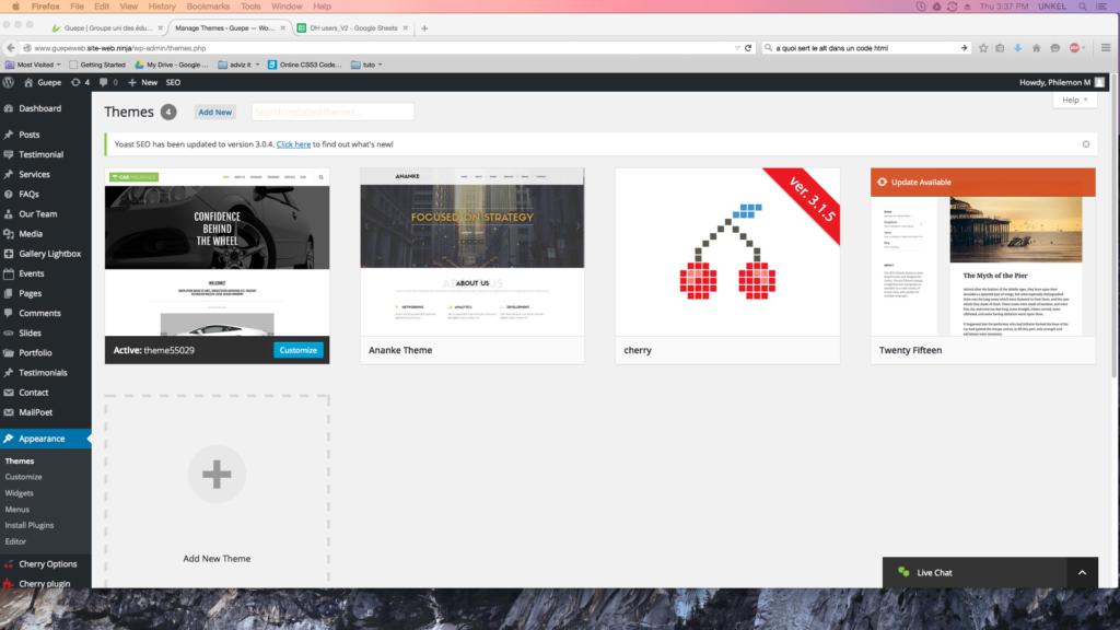 capture d'écran de la page theme de WordPress