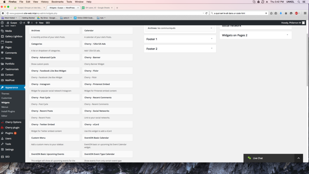capture d'écran de la page widgets de WordPress